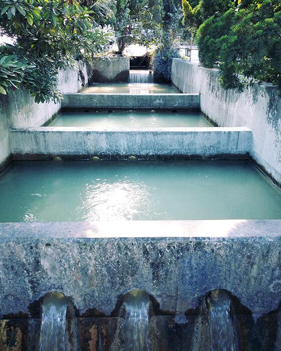 水浄化装置1